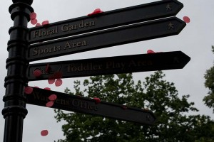 Poppy petals in Rugby Town for World War One centenary