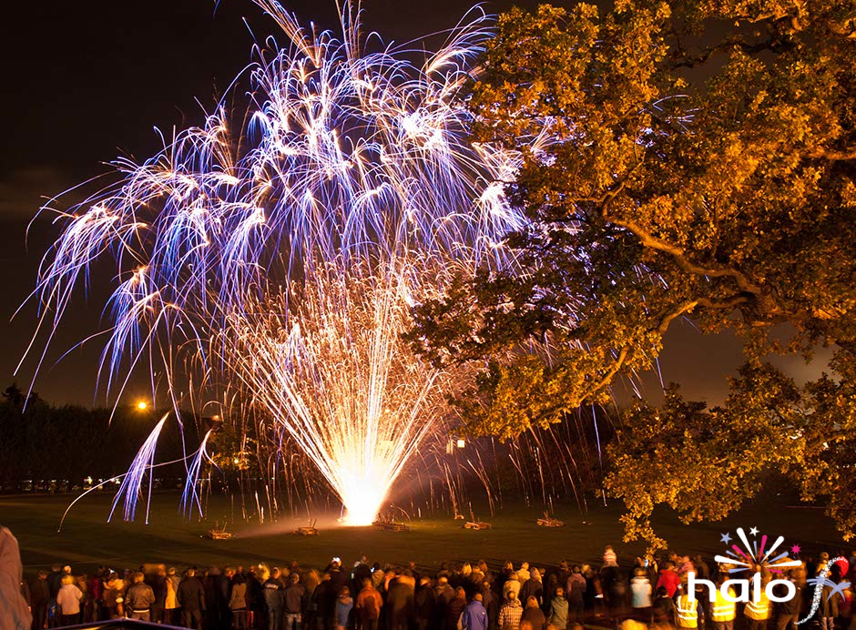 The finale fireworks at Balsall Common halloween fireworks display. A large fan of blue crossettes with brocade gold mines