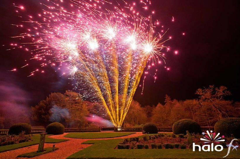 A fan of red pink fireworks with gold tails as part of a celebration of life fireworks display in Warwickshire